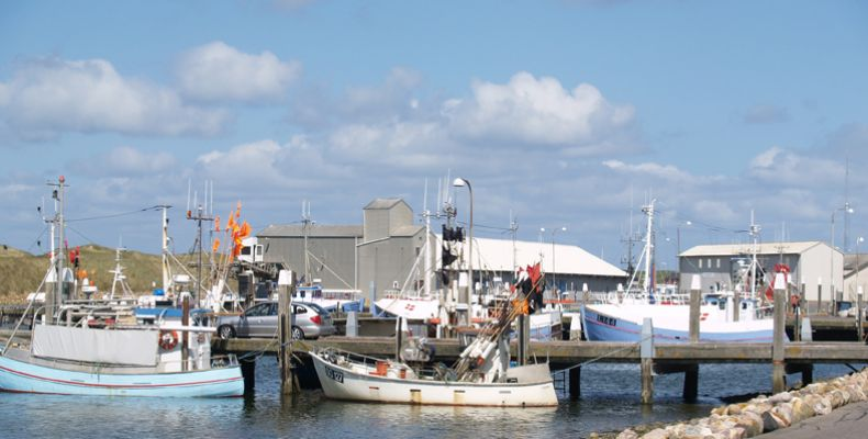 8-1-thorsminde-fiskerihavn19FB7DFD-DFA1-88F7-705F-512E4B90FF9A.jpg